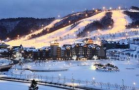 Alpensia Ski Resort Room Reservation (Winter)
