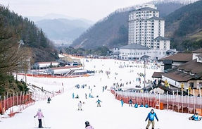 2D1N+ All-inclusive Ski Tour: Elysian Gangchon Ski Resort - Elsuite Condo