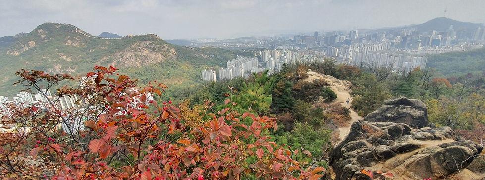 Ansan Mountain - Autumn - Homepage Banner.jpg