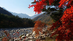 TOP Autumn Foliage Places in/outside Seoul - Seoraksan National Park | KoreaToDo