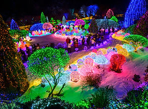 TOP Winter Places to Visit in & out Seoul - The Garden of Morning Calm Lighting Festival | KoreaToDo
