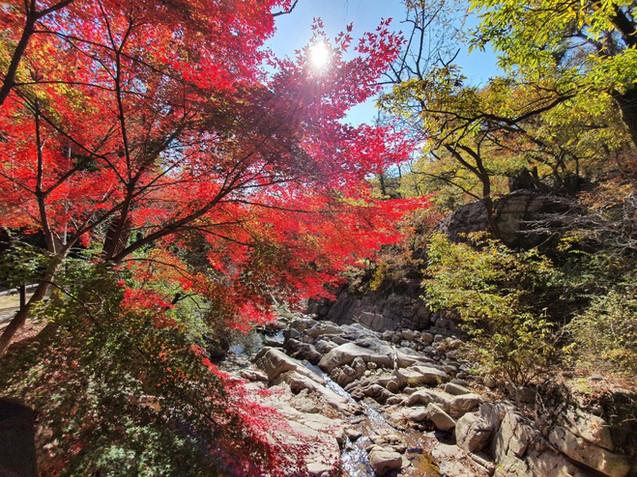 Bukhansan National Park - Jeongneung Park Information Center