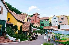 Nami Island, Petite France, Garden of Morning Calm & Gangchon Rail Bike Day Tour