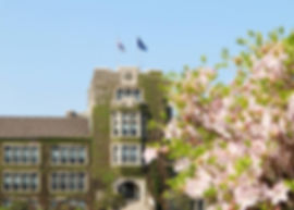 Yonsei University - Spring | KoreaToDo