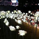 Dongdaemun Design Plaza - Flowers 3.jpg