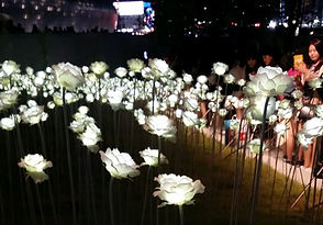 TOP Winter Places to Visit in & out Seoul - LED Rose Garden at Dongdaemun Design Plaza | KoreaToDo