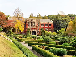 TOP Autumn Foliage Places in/outside Seoul - Yonsei University | KoreaToDo