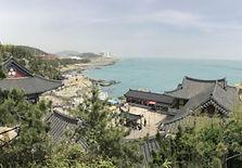 East Busan Exploration Half Day Tour