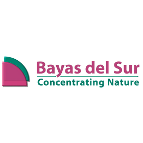 bayas_del_sur_logo.png