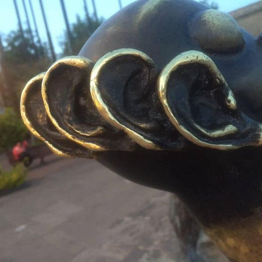 CAOHC Certification/Recert 2020