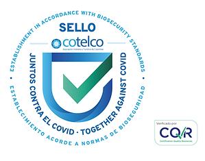 Logo-CQR-Surviliance.png