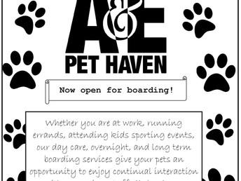 A&E Pet Haven Boarding