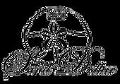 Sand-Dollar-logo2.png