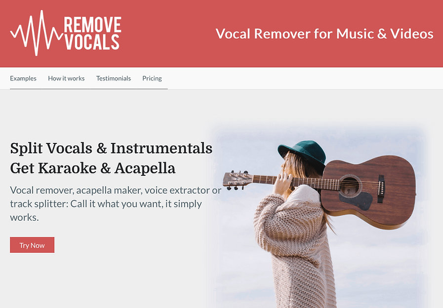Remove Vocals.jpg