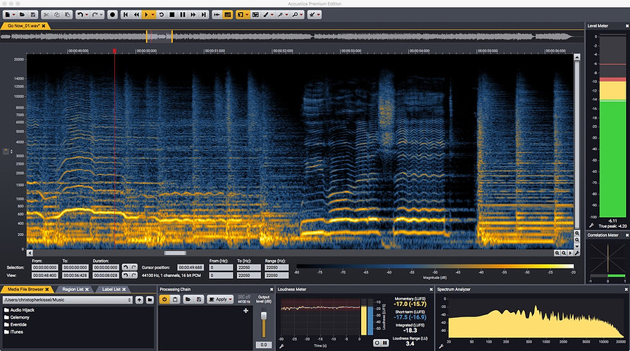 Acoustica Spectral Editor.jpeg