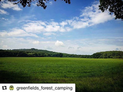 #Repost _greenfields_forest_camping with