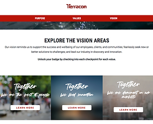 Terracon Vision.png