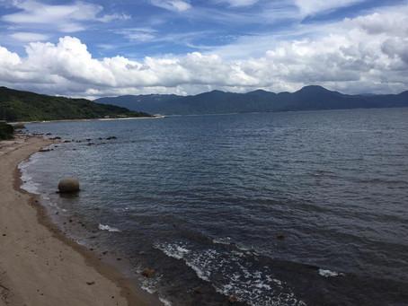太宰府天満宮のクスノキと、糸島の海と。