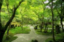 森をツナグ