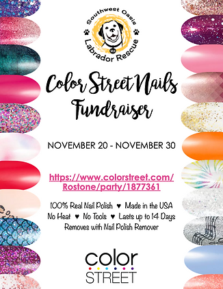 SOLR-ColorStreetFundraiser-Updated.001 (