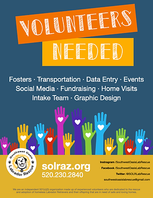SOLR Volunteer Flyer (1).png