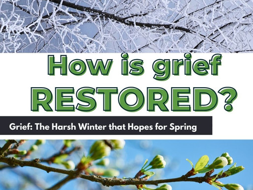Healing from Grief: The Harsh Winter that Hopes for Spring
