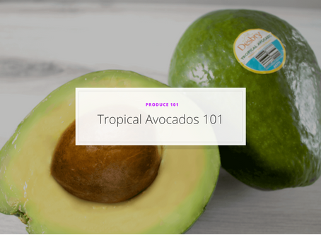 Tropical Avocados 101