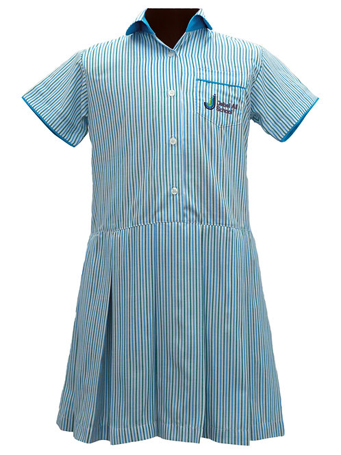 Blue White Green Stripe Dress