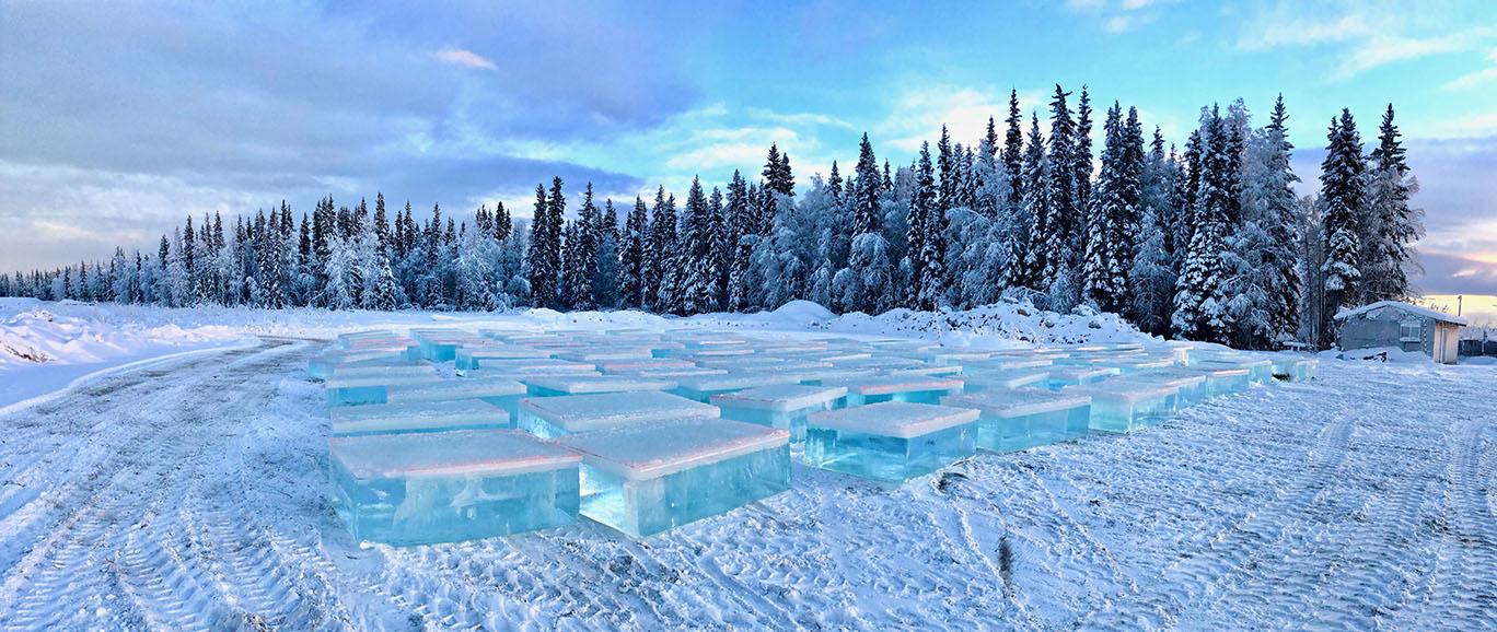 icepark8.jpg