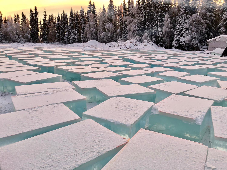 ice park3.jpg