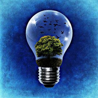 environment-1392332_1920.jpg