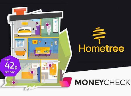 hometree-.jpg