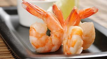 Pacific White Shrimp.jpg