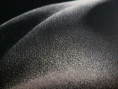 Close up of Out of the Shadows 9.0 by Shane Turner. Pointillism dot drawing of artistic nude bodyscape. Black and white ink drawing.