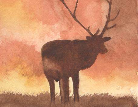Un cerf dans la brume_SMALL.png