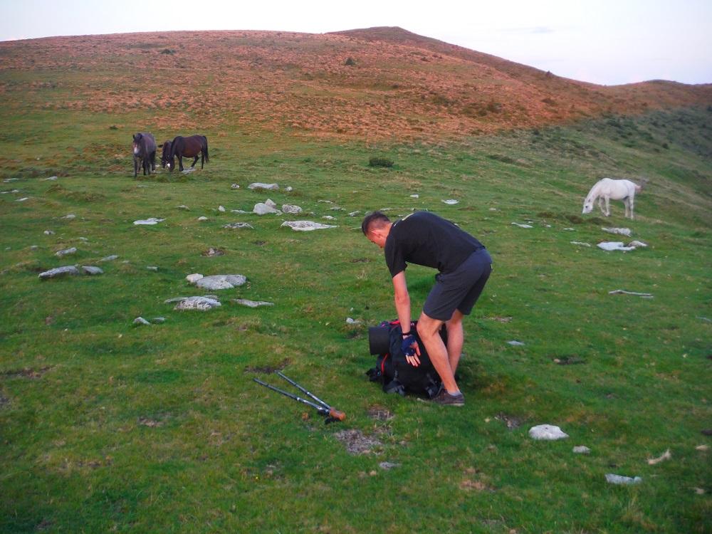 Obkličování koní při stavění stanu