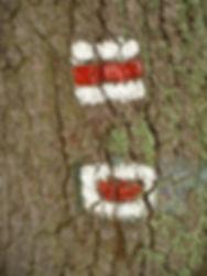 Označení pramene za Hiadeľským sedlom (nenalezeno)