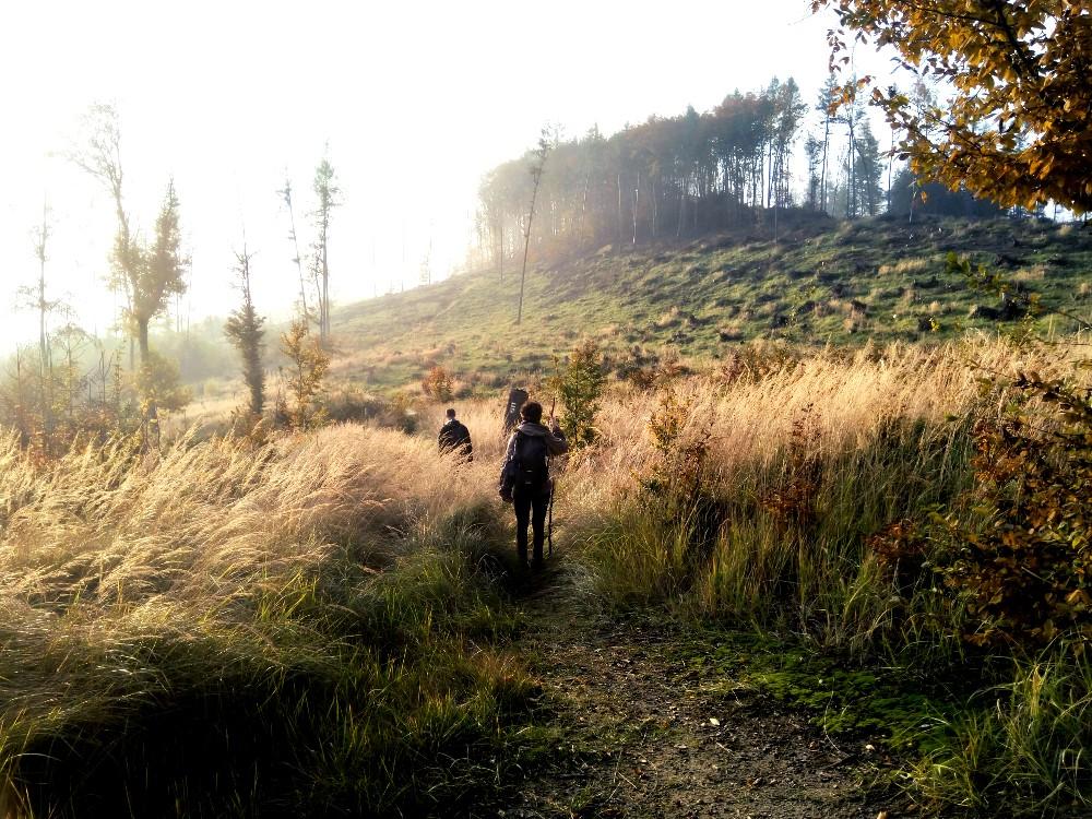 Cesta pohořím Chřibů