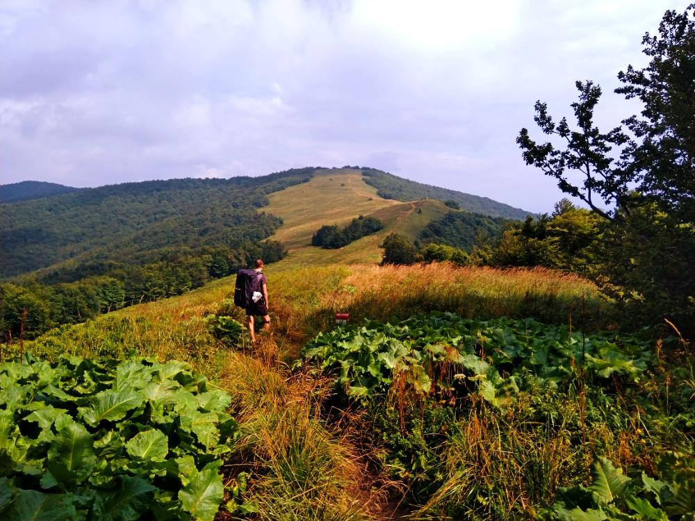 Hřeben Bukovských vrchů