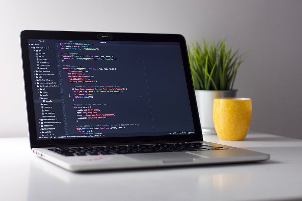 website development backend coding