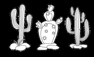 Cactus-01-01.png