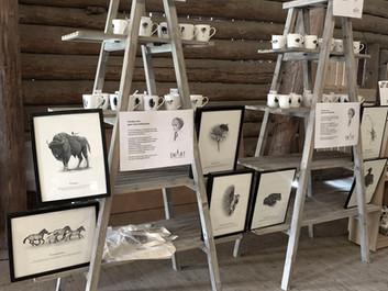 New illustrations for Nordens Ark.