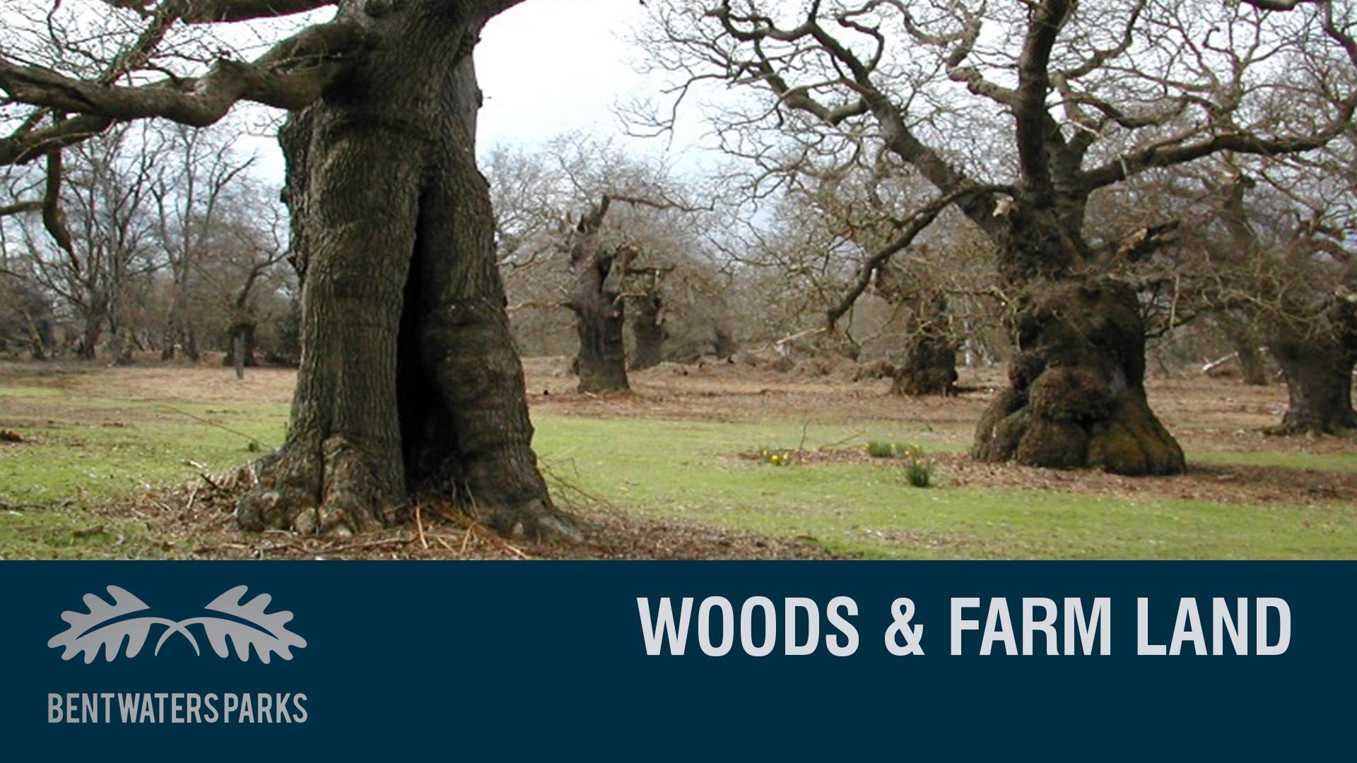 WOOD & FARMLAND