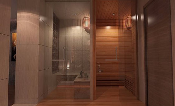 sauna-shower-vip.jpg