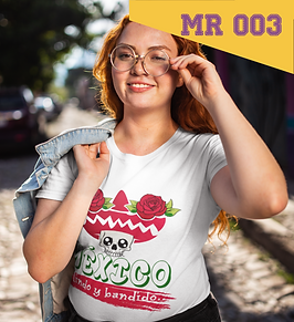 MR 003.png