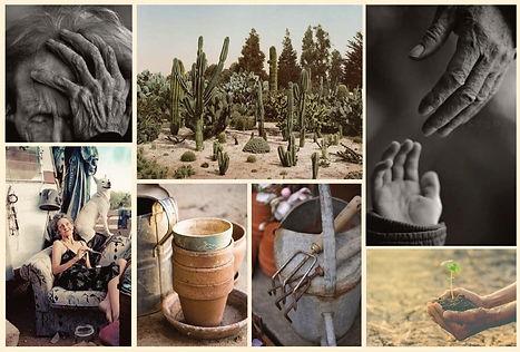 cactus_pddp_lookbook_v1_Page_06_edited.j