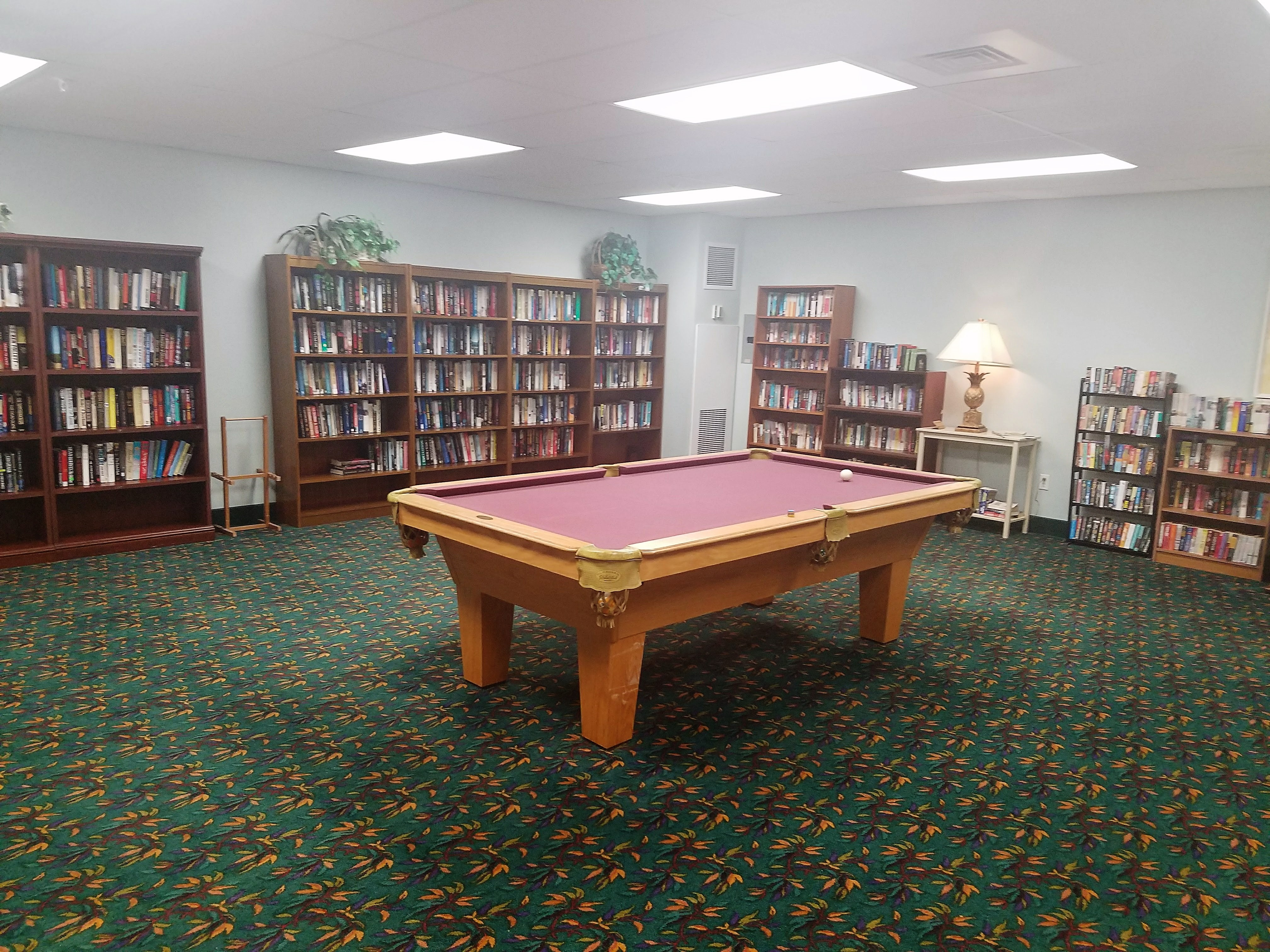 Our pool table and Library