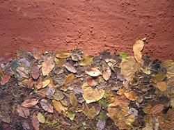Bongi Bengu, Ngong leaf series # 1 (2006)