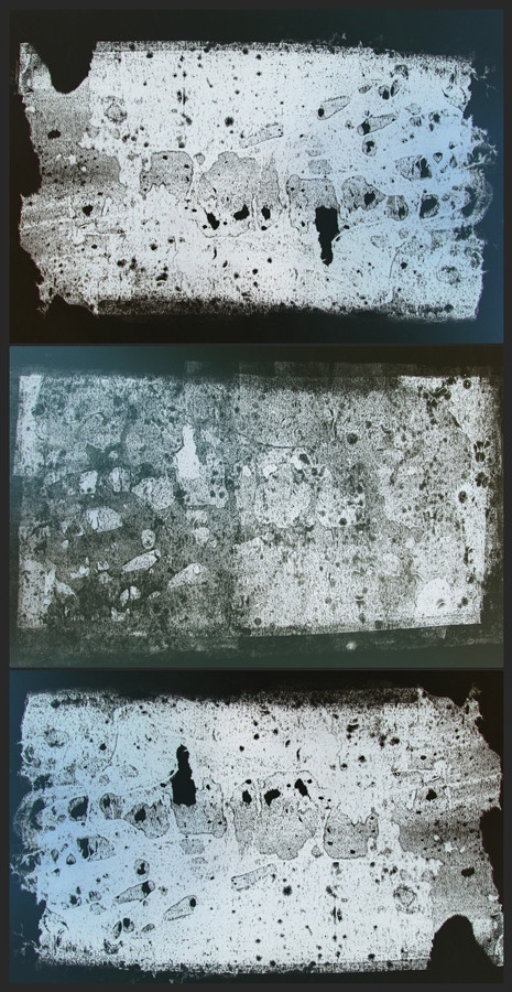 Ingrid Coerlin - tracks of ashes.j