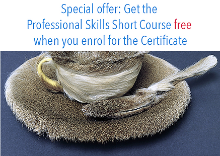 Certificate free course.png